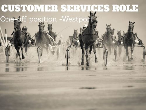 One-off Customer Service Role -westport