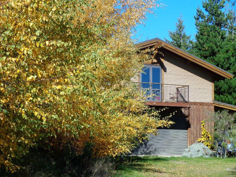 Rural Property Maintenance & Tree Planting