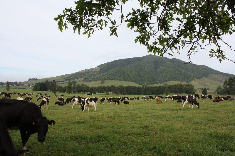 Milk Harvester & Farm Hand