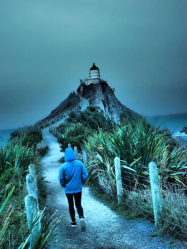 Travel Nz With Us! Roaming Charity Fundraisers - All Accomodation & Travel Paid For!