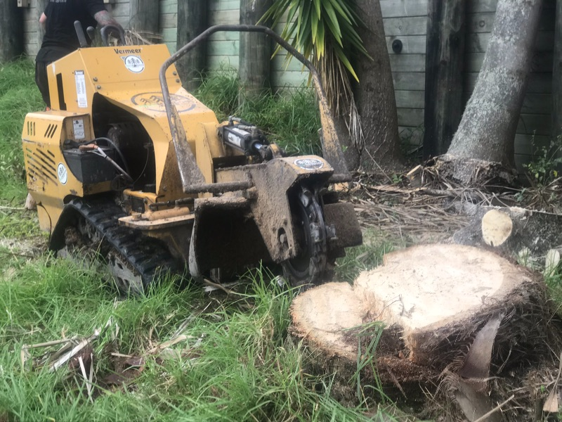 Arborist, Labourer
